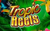 Tropic Reels играть в казино Вулкан