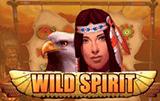 Wild Spirit играть в казино Вулкан